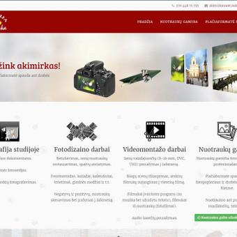 Interneto svetainių kūrimas Kaune / Martynas Leščinskas / Darbų pavyzdys ID 109425