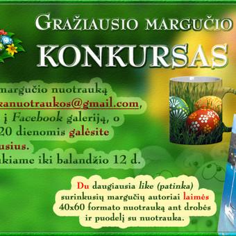 Interneto svetainių kūrimas Kaune / Martynas Leščinskas / Darbų pavyzdys ID 110505