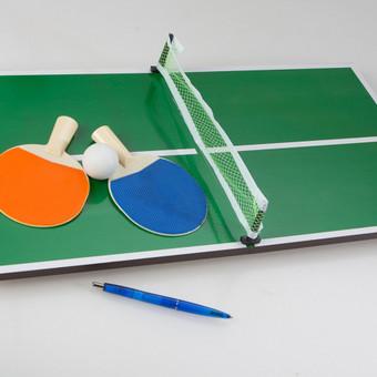 Mini stalo teniso žaidimo taisyklės atitinka klasikinio stalo teniso taisykles. Sumažintas žaidimo variantas pareikalaus iš žaidėjų greitesnės reakcijos, užsispyrimo ir lankstumo. Prie vien ...