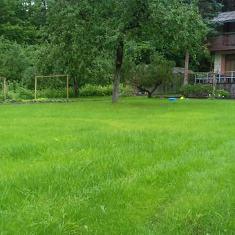 Šlaitų tvirtinimas .vejos įrengimas. / Grasilda / Darbų pavyzdys ID 141637