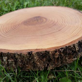 Uosio medienos padėklai (ripkos) impregnuoti aliejumi. Storis 2-3 cm, diametras 18-26 cm