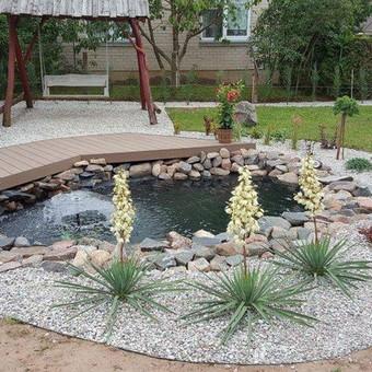 Dekoratyvinių vandens tvenkinukų projektavimas,projekto įrengimas, konsultavimas.
