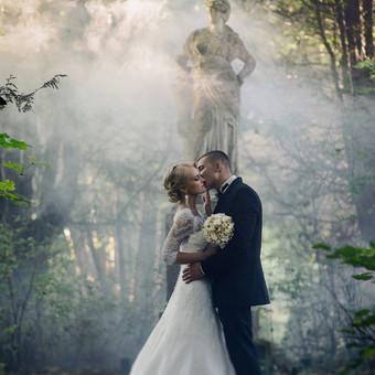Profesionalus vestuvių fotografavimas / Domas Lukauskas / Darbų pavyzdys ID 169247