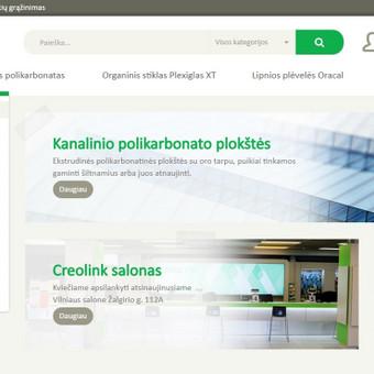 Elektroninės komercijos profesionalas ir programuotojas / Ričardas / Darbų pavyzdys ID 174237
