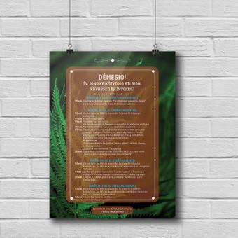 Informacinis plakatas (programa) Joninių šventei.