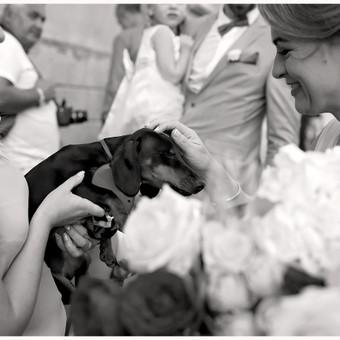 Happiness Photography / Gintarė Liakšaitė / Darbų pavyzdys ID 217615