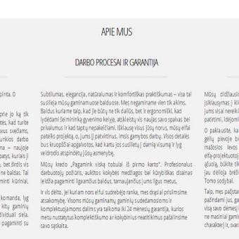 Berguci.com interneto svetainės prisistatymo tekstai