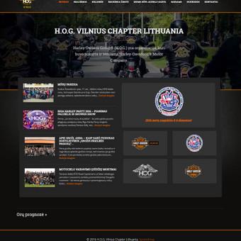 Interneto svetainių kūrimas Kaune / Ernestas Oželis / Darbų pavyzdys ID 229371