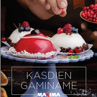 MAXIMOS katalogas GAMINAME KASDIEN. Interviu iš MAXIMOS meistrų ėmimas, produktinių tekstų sukūrimas.