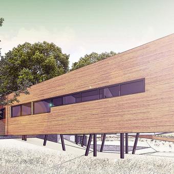Architektas, projektavimas / Namai LT / Darbų pavyzdys ID 231595