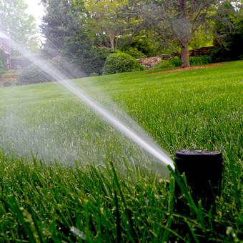 Veja gyvas organizmas, kaip ir žmogus jai reikia daug ir geros kokybės vandens. Tą pasiekti yra visai nesunku, tiesiog Jūsų sklypui reikialinga laistymo sistema, kuri užtikrins nuostabų vejos  ...