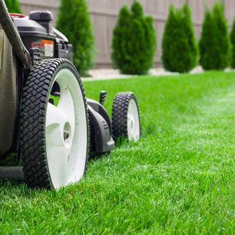 Vejos pjovimas yra svarbus ir atsakingas darbas. Pasirašome sutartis su klientais, teikiame dideles nuolaidas visos vasaros sezono abonimentams. Patikėkite savo veją mums.