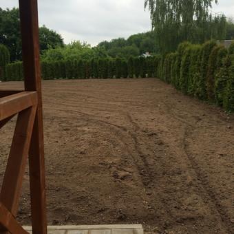 Sufrezuotas dirvožemis, ir kartu išlygintas, belieka tik išrinkti akmenis, šakas, galutinai lygintis ir sėti vejos sėklas.