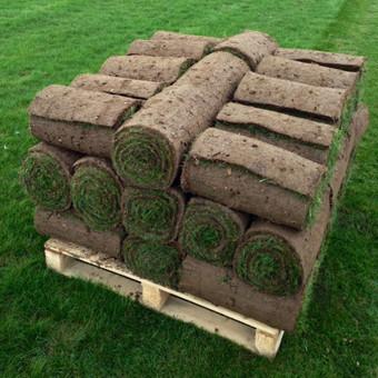 Klojamosios vejos įrengimas. Siūlome džiaugtis nuostabia veja iškarto. Prekyba klojamaja veja.