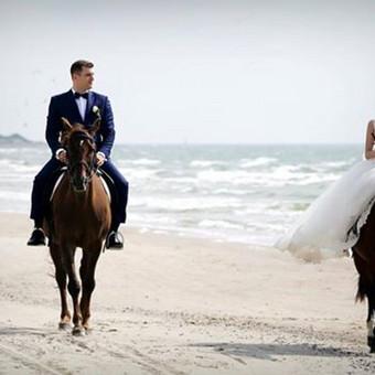 Wedding Dream - Tatjana Vasičkina, vestuvių planuotoja / Tatjana Vasičkina / Darbų pavyzdys ID 241151