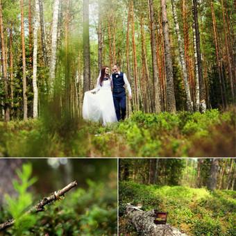 Vestuvių fotografavimas Vilniuje, aukštaitijoje / Donata Vitkienė / Darbų pavyzdys ID 247149