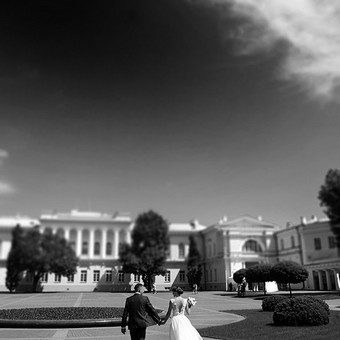 Vestuvių fotografavimas Vilniuje, aukštaitijoje / Donata Vitkienė / Darbų pavyzdys ID 247151