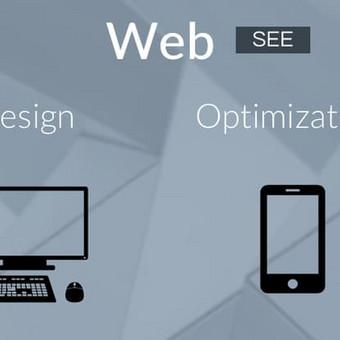 Profesionalių Internetinių svetainių vystymos bei kūrimo paslaugos