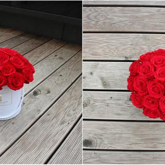 Miegančios (stabilizuotos) rožės džiugins Jus net 2-3 metus! Didelis spalvų pasirinkimas.