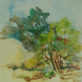 Peizažas akvarele iš natūros.