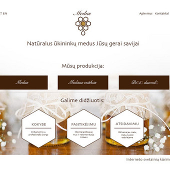 SVETAINIŲ KŪRIMAS www.overslas.lt Didiname jūsų verslo vertę / Roman Ustinovič / Darbų pavyzdys ID 324331