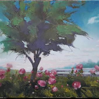 """""""Galiūnas medis pakelės"""". Paveikslas ant drobės 30x40 cm aliejiniais dažais. Parduodamas. 35 eurai"""