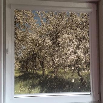 Nepriekaištinga kokybė  už dar mažesnę kainą / Jaukūs langai / Darbų pavyzdys ID 352915