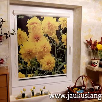 Nepriekaištinga kokybė  už dar mažesnę kainą / Jaukūs langai / Darbų pavyzdys ID 352951