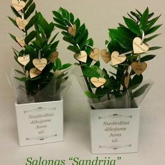 Gėlės ir puokštės / Sandrija / Darbų pavyzdys ID 356949