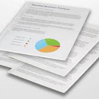 Rašto darbų konsultantė / Aušra / Darbų pavyzdys ID 359283
