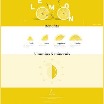 Internetinių puslapių ir grafikos dizainas / Vilma / Darbų pavyzdys ID 364223