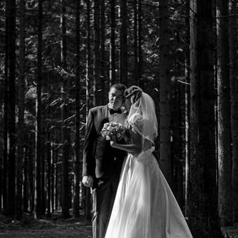 Fotografas / Monika Šakytė / Darbų pavyzdys ID 377635