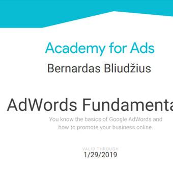 SEO|SEO paslaugos |  SEO optimizacija | Google AdS / Bernardas Bliudžius / Darbų pavyzdys ID 381925